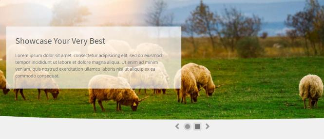 Slideshow - Practical Homepage Demo