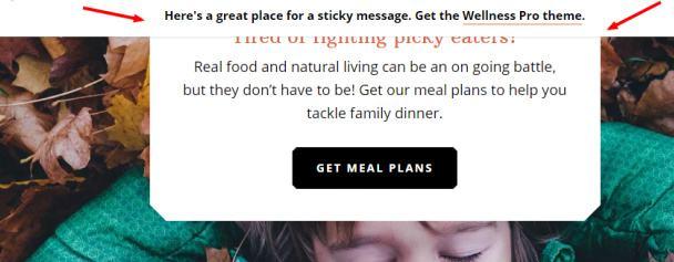 Sticky Message Widget - StudioPress Wellness Pro