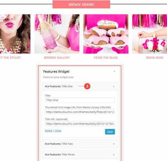 BluChic Kelly Demo : Chic Business WordPress Theme