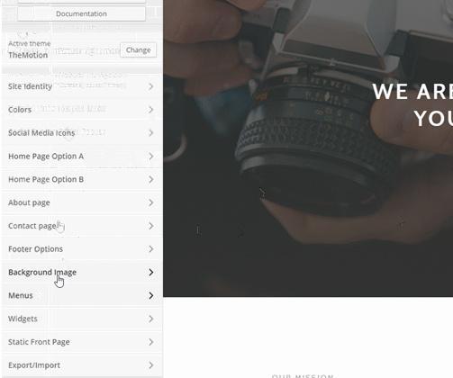 customizer-options-themotion-themeisle