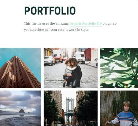 portfolio-items-maker-pro-studiopress