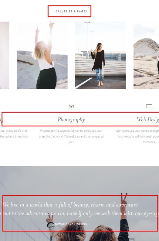 gallery-pro-widgetized-homepage