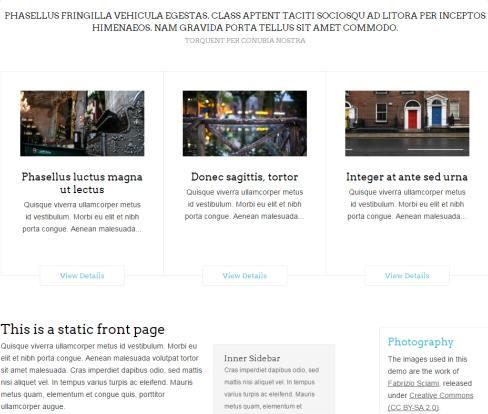republica-widgetized-front-page