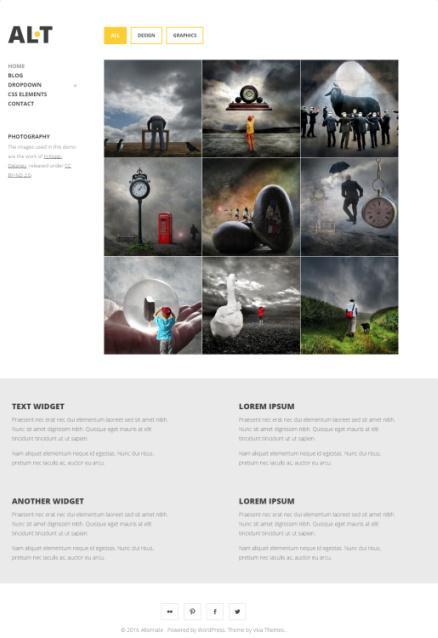 alternate-portfolio-theme-viva-themes