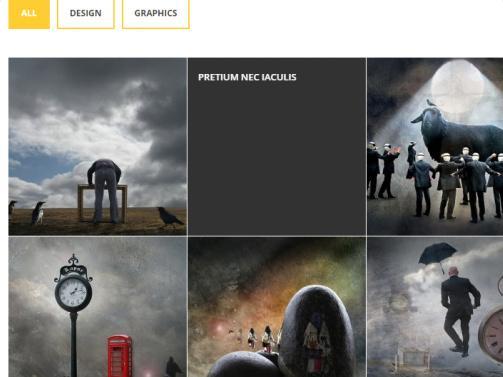 alternate-portfolio-on-homepage
