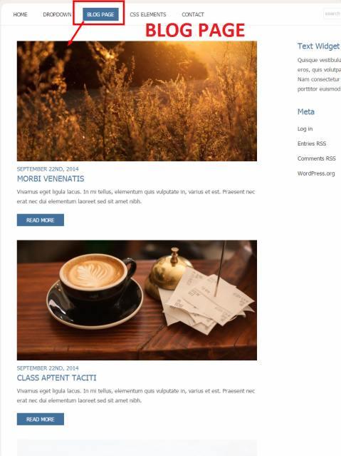 blog-page-revival-theme