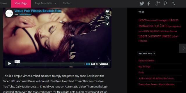 Floating Header Sidebar - Video World Blog Theme