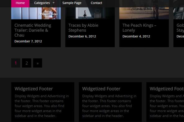 Video Hub Theme Review - RichWP | IS IT GOOD ?