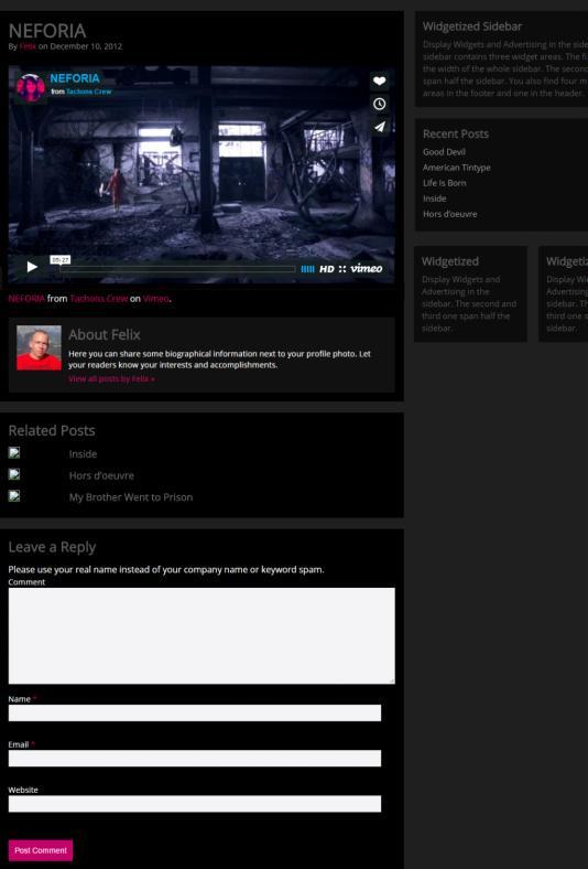 Single Post and Sidebar - Video Hub Theme RichWP