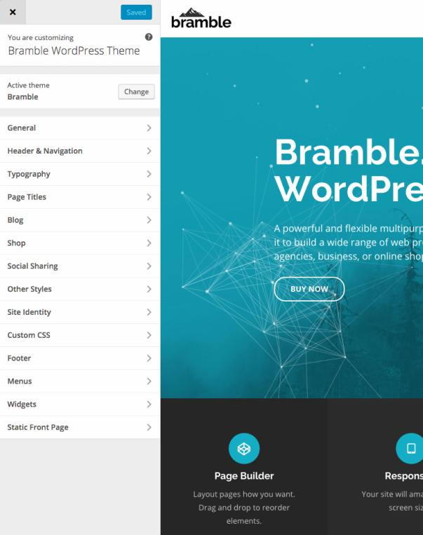 Customizer Theme Options - Bramble Theme Trust