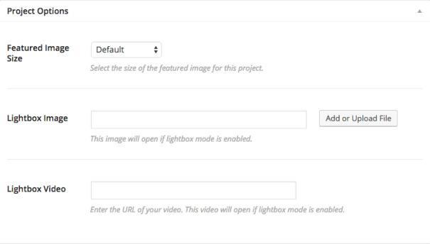 Project Options - Bramble ThemeTrust