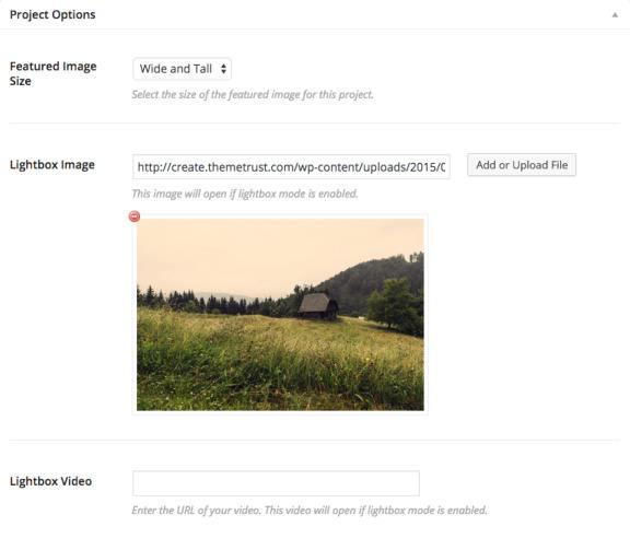 Project Portfolio Options - Create Theme Trust