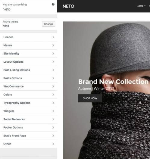 Neto Customizer Options - eCommerce options