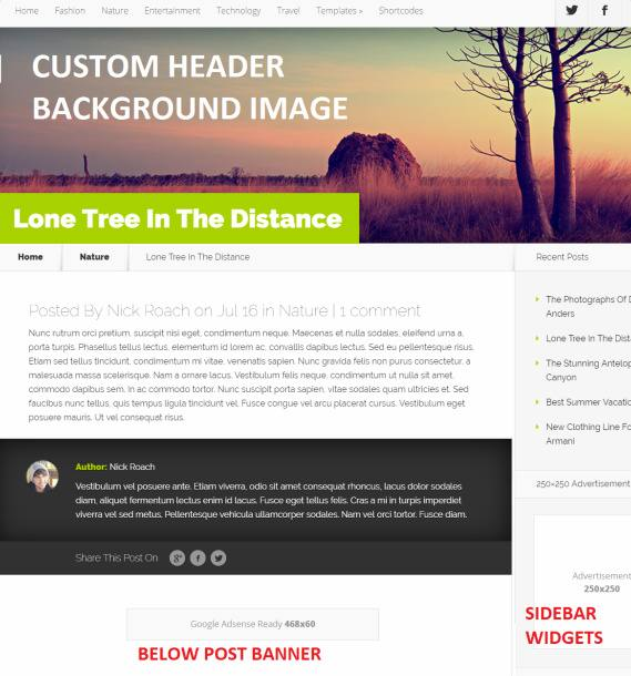 Custom Header and Sidebar Widgets - Nexus Post Preview