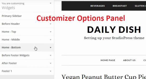 Customizer - Daily Dish Pro Options Panel