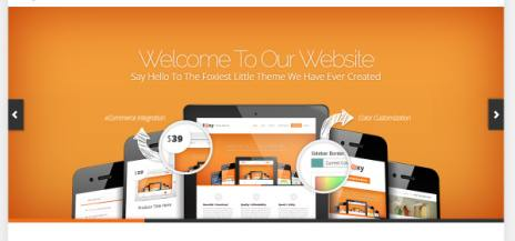 Homepage Slideshow - Foxy Elegant Themes