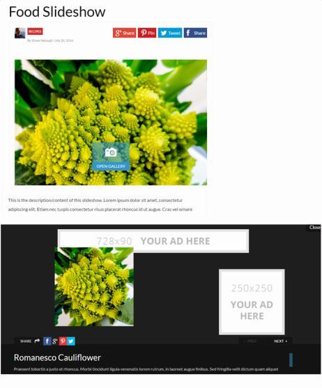 Slideshow Post Type - Performag Thrive Themes
