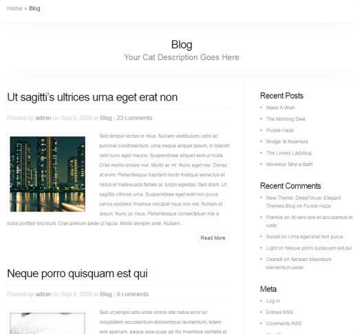 Chameleon Blog Page