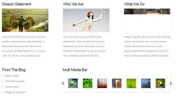 Chameleon Blurbs and Media bar - Homepage