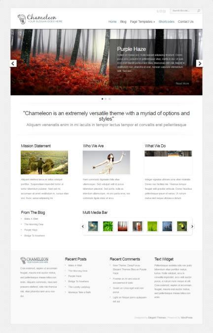 Elegant Themes Chameleon Demo : Business WordPress Theme