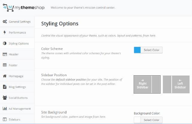 Writer MyThemeShop - Theme Options Panel