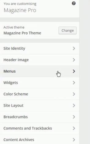 Customizer Options - Magazine Pro Theme