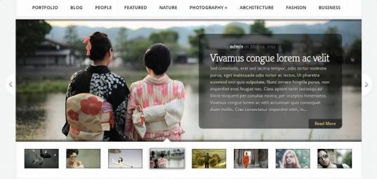 Slideshow Aggregate Elegant Themes
