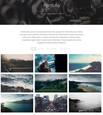 Swell Portfolio Page Features