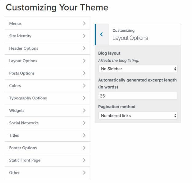 Customizer - The Styler CSSIgniter