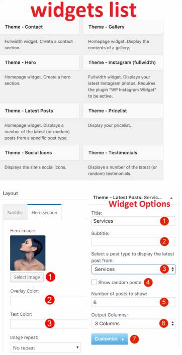 Styler - Homepage Widgets and Layout