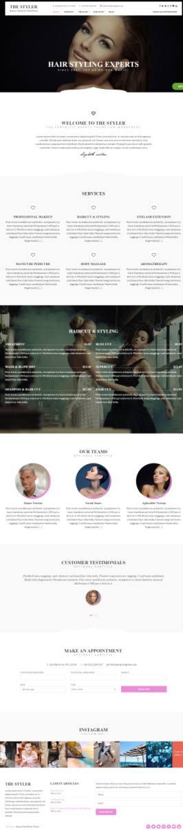 CSSIgniter The Styler : Responsive WordPress Business Theme