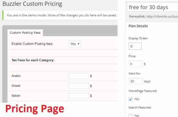 Buzzler Pricing Options
