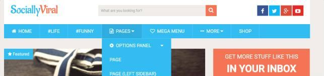 Header and Menu Options - SociallyViral