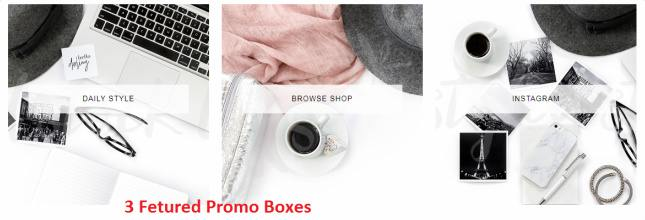 Featured Promo Boxes - Adelle Bluchic