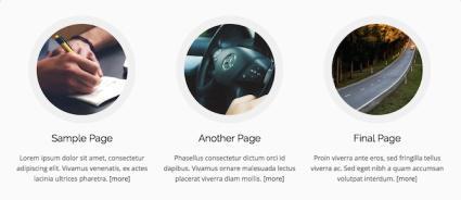 MH Custom Pages Widget - Business Them MH Custom
