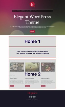 MH Elegance Homepage Widget Areas