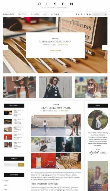 CSSIgniter Olsen Demo : Responsive Blog WordPress Theme