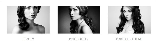 Portfolio Page - Genesis Plugin Elegance