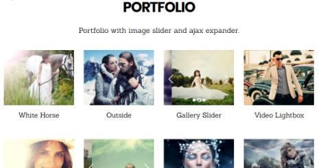 Portfolio Support - Parallax Themify