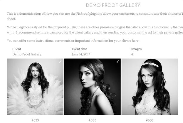 Proof Gallery Page - Elegance Pro Child Theme