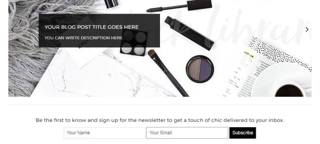Slider and Newsletter Subscribe Options - Adelle Pro