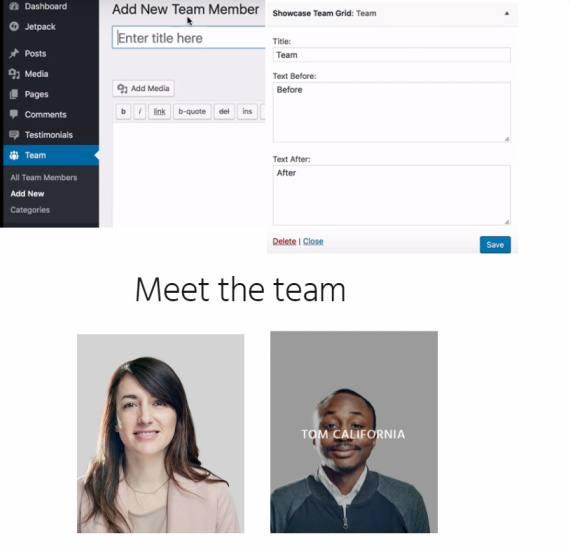 Team Members Widget - Showcase Pro