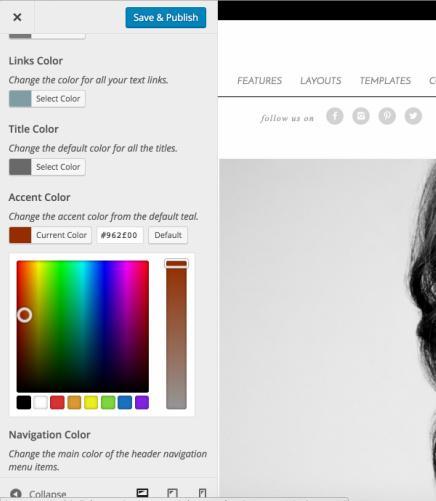WordPress Customizer - Elegance Pro