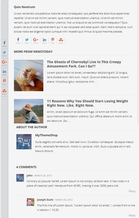 Single Post Layout - News Today Blog Theme