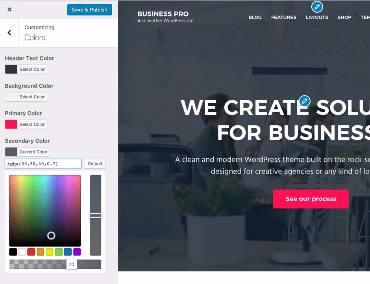 Customization Options Business Pro