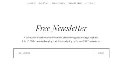 Newsletter Widget Template - No Sidebar Pro