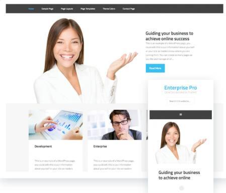 Responsive Business Theme for Genesis - Enterprise Pro