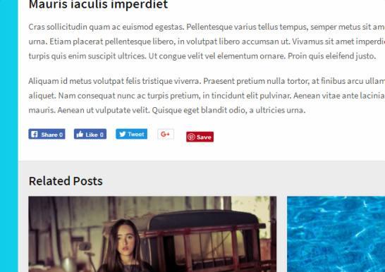 Single Post Features - Bridge MyThemeShop