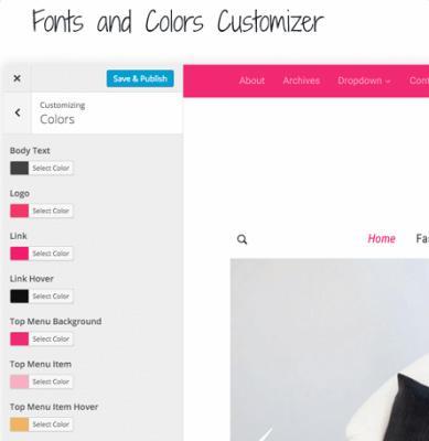 Customizer Options - Monte