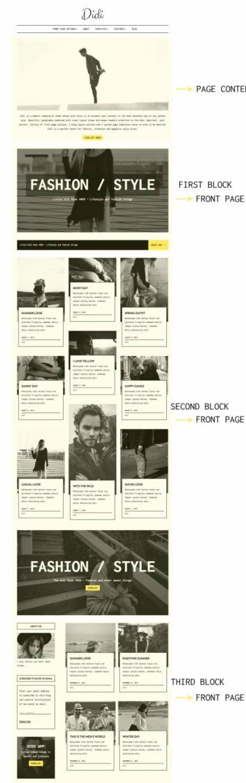 Didi Blog WordPress Theme : ThemeIsle Review